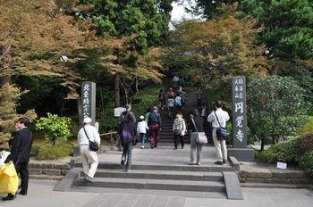 2011_1103北鎌倉散策0030_R.JPG
