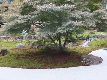 2011_1103北鎌倉散策0081_R.JPG